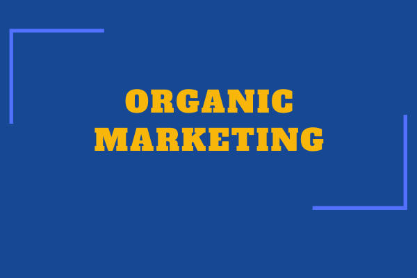 Organic marketing: Let your business grow by itself!